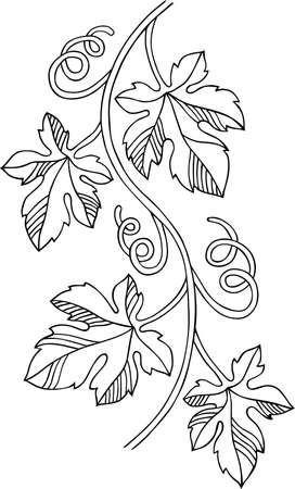 Grape design element Stock Vector - 13450320