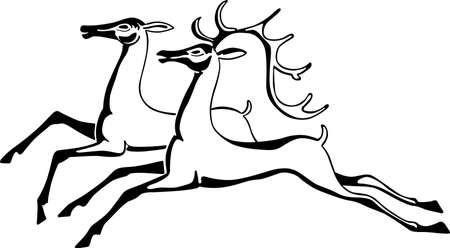 fallow deer: Two beautiful deers Illustration