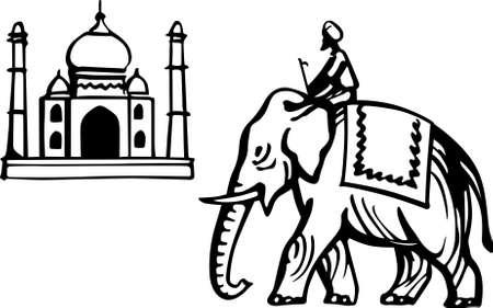 indian elephant: Taj Mahal y el elefante indio