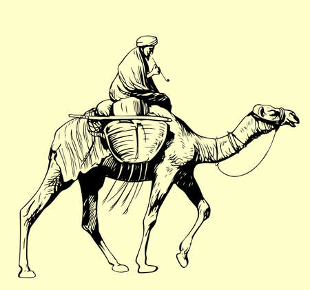 cartoon camel: Bedouin riding a camel