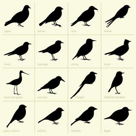 Set van vogels
