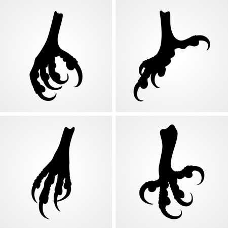 bird feet: Set of bird claws