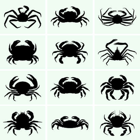animal silhouettes: Crabs