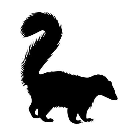 stink: Skunk, shade picture