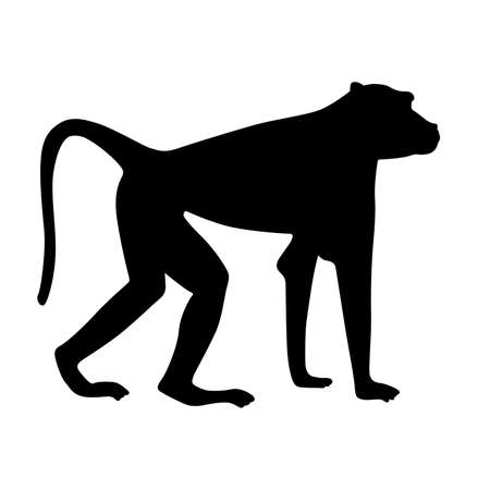 animal silhouette: Baboon, shade picture Illustration
