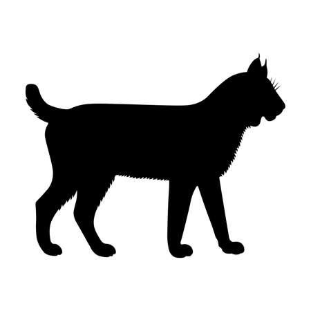lynx: Lynx,  shade picture Illustration