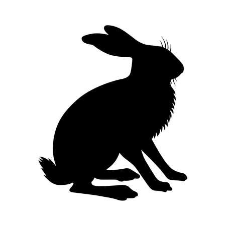 liebre: Hare, cortina cuadro