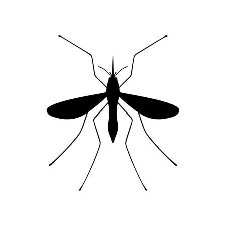 bloodsucker: mosquito Illustration