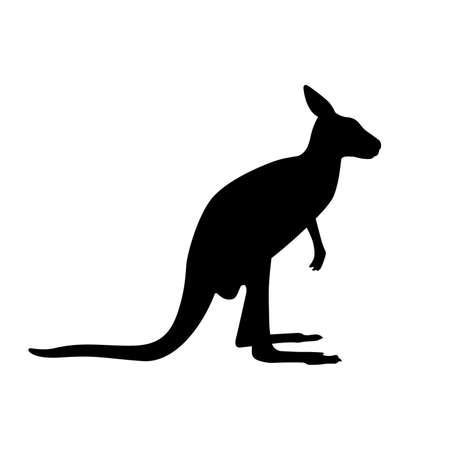Kangaroo (Macropus), shade picture Illustration