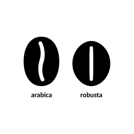 Arabica and robusta coffee beans Illustration. Illustration