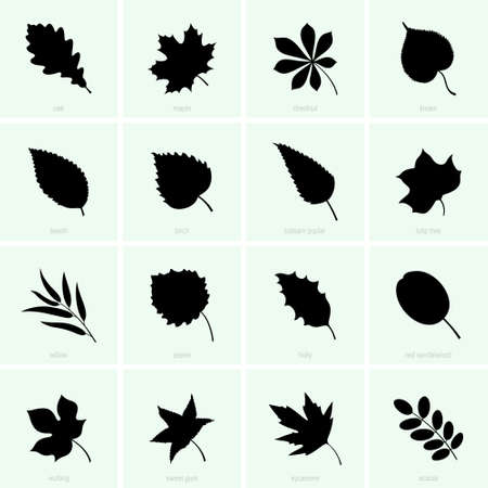 Set of tree leaves in silhouette illustration. Stock Illustratie