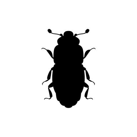 Sap beetle icon Иллюстрация