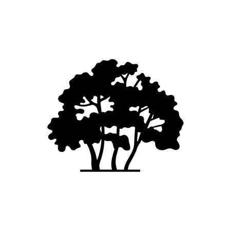 Habitus characteristic aspect icon