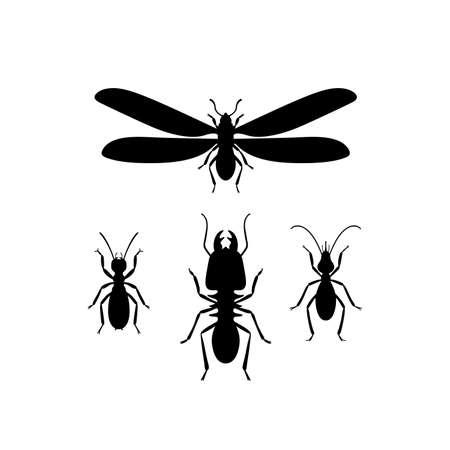 Termites (queen, soldier, worker)