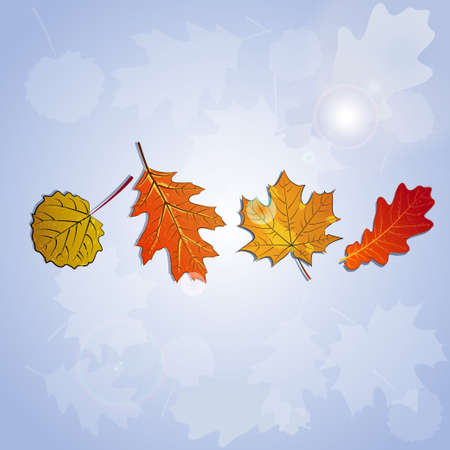 A set of stylized autumn leaves with black outline.Doodle style