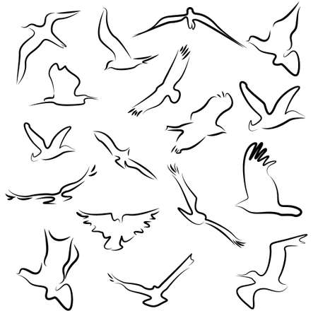 Bird nature flying symbols and icons Illustration