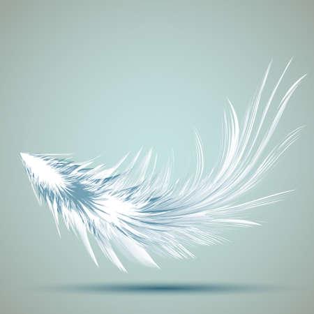 Vector Illustration of Feather EPS10 Card Design Illustration