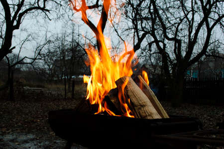 billet: Fire flames background.Wood in the fire Stock Photo