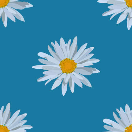 field of daisies: field of daisies. seamless pattern