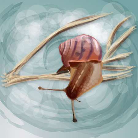 limber: Realistic snail on a dry branch. Vector illustration
