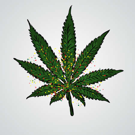 Marijuana or cannabis vector doodle leaf Illustration