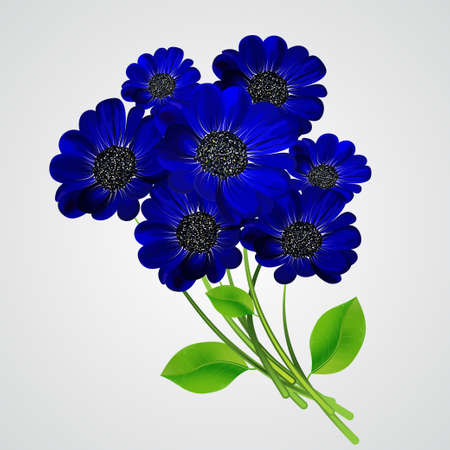 A bouquet of blue flowers isolated on a white background