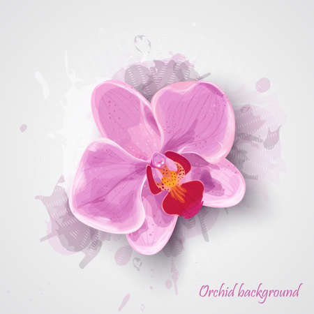 Orchid pink flower pattern with watercolor vector drops. vector illustration