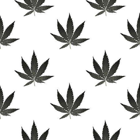Hemp Cannabis Leaf in vintage linear style - seamless pattern. Иллюстрация