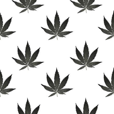 Hemp Cannabis Leaf in vintage linear style - seamless pattern. Illustration