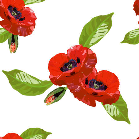 Seamless pattern with red poppy flowers and buds on white. Ilustrace