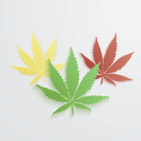 set of Marijuana or cannabis vector leaf