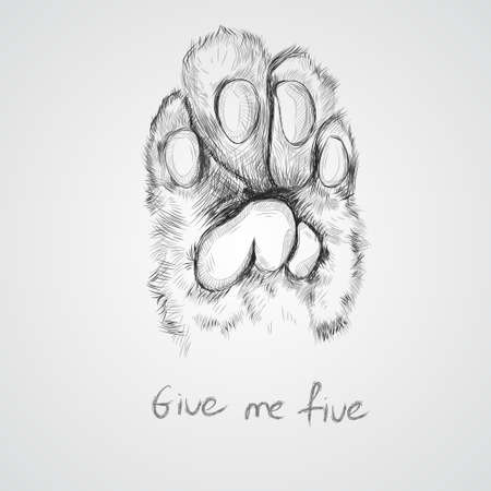 A Cat's paw sketch vector graphics. black and white drawing