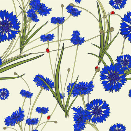 Seamless pattern with blue cornflowers on white background.