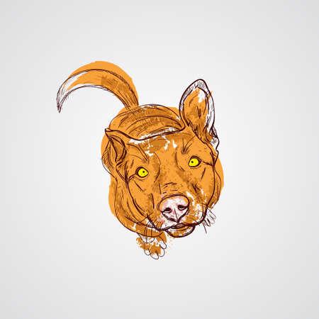 Dog sitting. Vector illustration