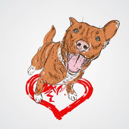 Dog sitting on heart