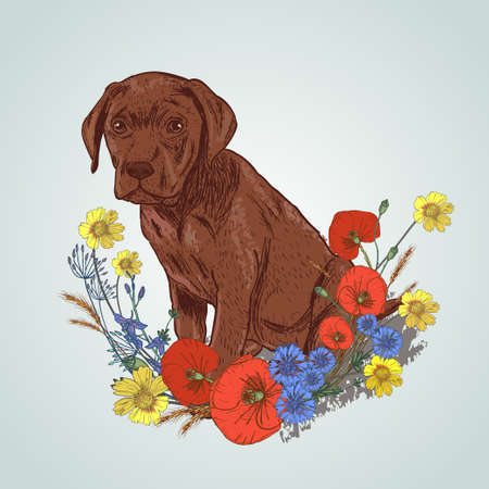 Dog sitting with flowers vector illustration