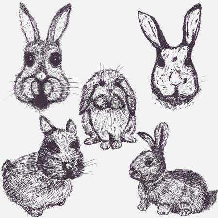Set of Easter rabbits hand drawn sketch illustrations