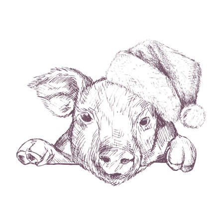 Christmas poster with image a pig portrait in Santas hat. Vector illustration.