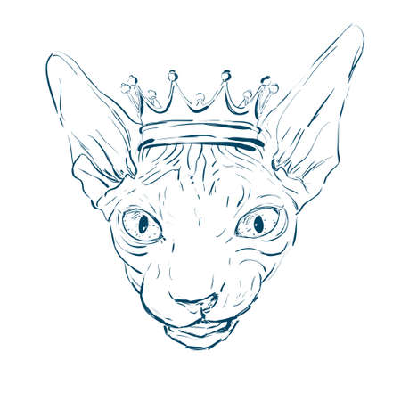 Sphynx cat with a little crown. Vector illustration.
