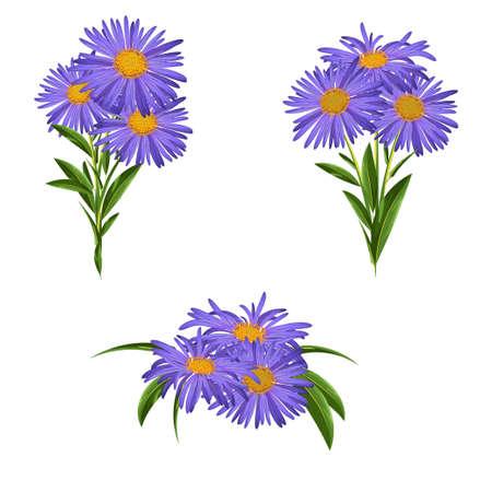Ensemble de fleurs bleues. Bouquet de marguerites bleues. Illustration vectorielle