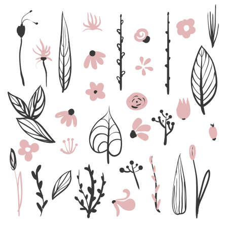 Vector floral set. Colorful floral collection with leaves and flowers
