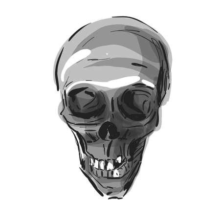 Skull isolated on a white background. Skull vector