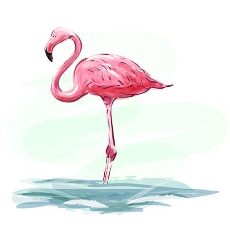 Flamingo. Pink flamingo staying in water. Pink bird