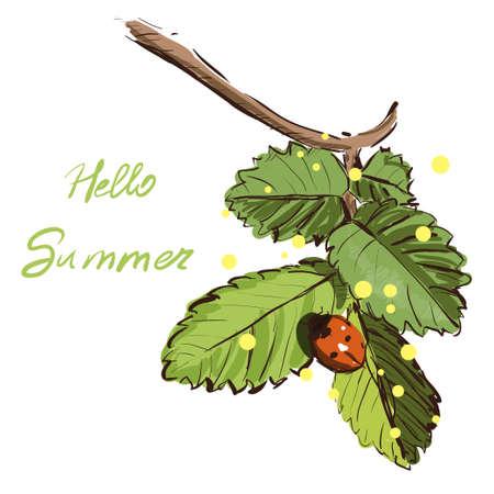 Green plant and ladybug vector. Hello summer illustration