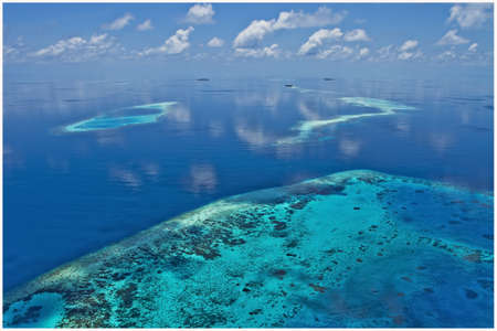 Maldives coral reefs photo