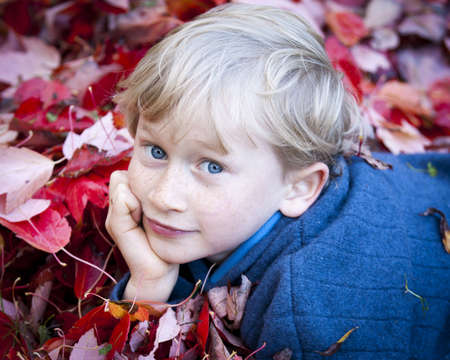 A young boy lying in a pile of leaves in the fall.