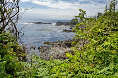 bc: A view of the Pacific Ocean from the west coats of Vancouver Island,British Columbia Canada Stock Photo