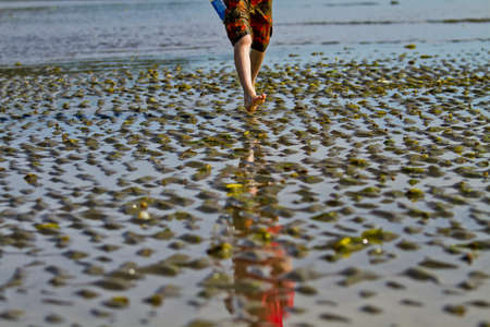 Young feet running along the wet sand of low tide 스톡 콘텐츠