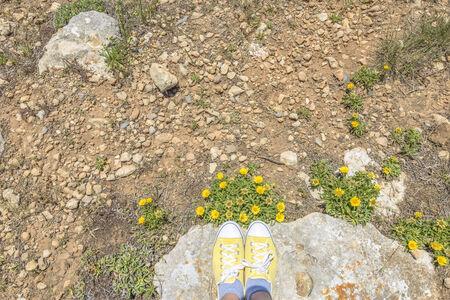 matching: Zapatos amarillos a juego flores de color en un d�a soleado