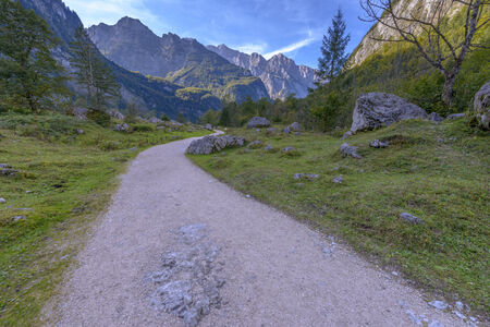 Road to Obersee, Berchtesgaden national park - Bavaria Germany photo